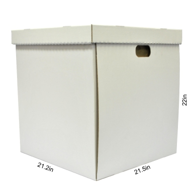 "20"" Wedding Cake Box"